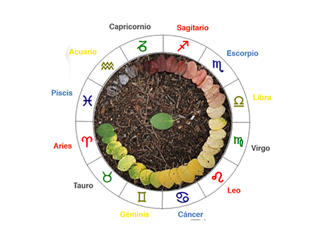 The Natal Chart and The Planets