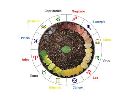 Los 12 Signos del Zodíaco